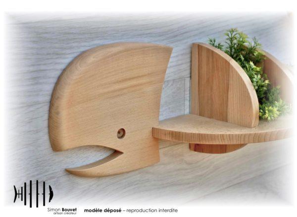 étagère baleine vue rapprochée avec plante d'ornement