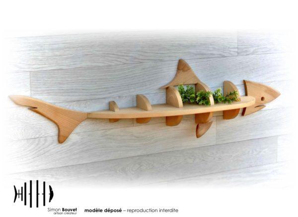 étagère requin vue arrière avec des plantes d'ornements